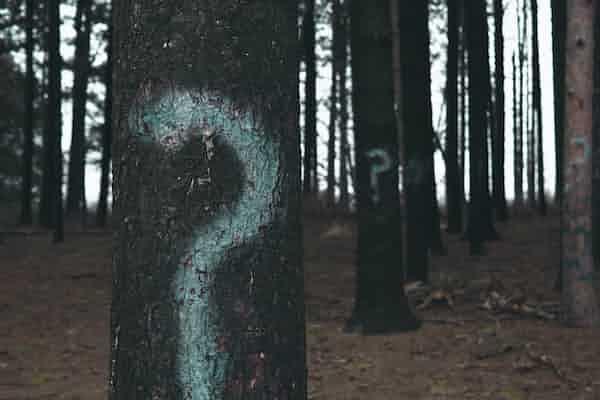 תשאול סוקרטי: שינוי דעה או גילוי מונחה? סקירת מאמרה של קריסטין א. פדסקי