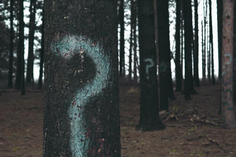 クエスチョンマークが描かれた木々