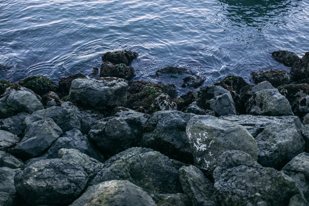 gray rocks on body of water during daytime