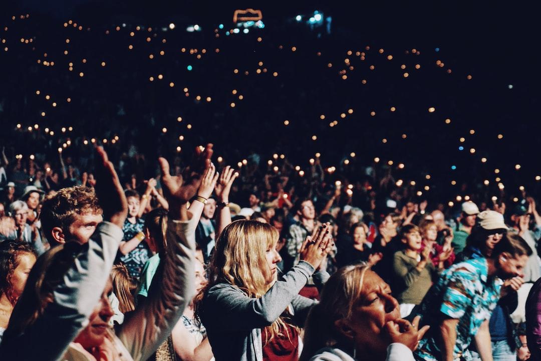 """""""Cheering concertgoers"""""""