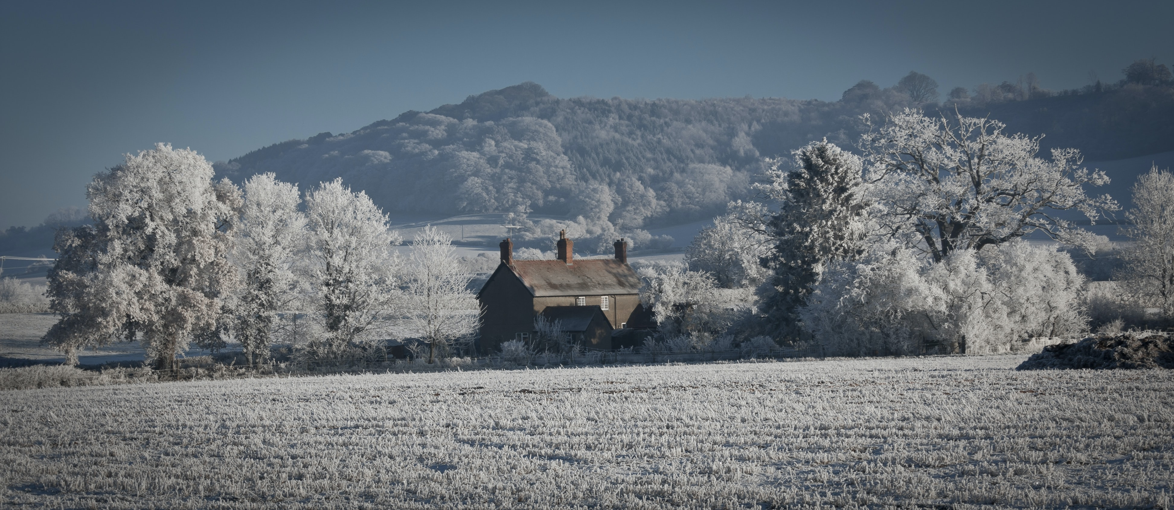 A rural house sits between two snow-covered trees on a farm in Shropshire, UK