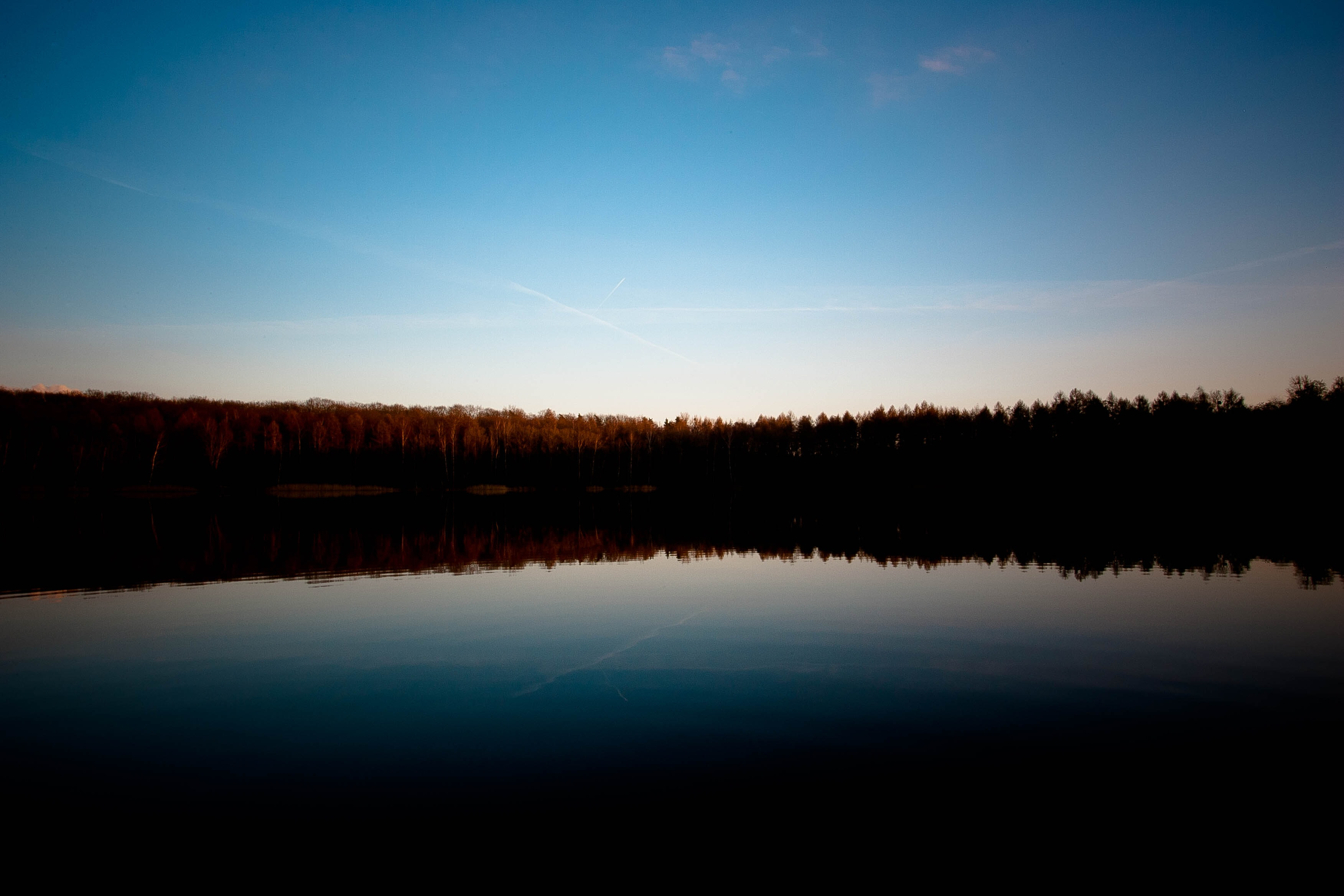 Silhouettes of trees reflected in a still lake in the evening