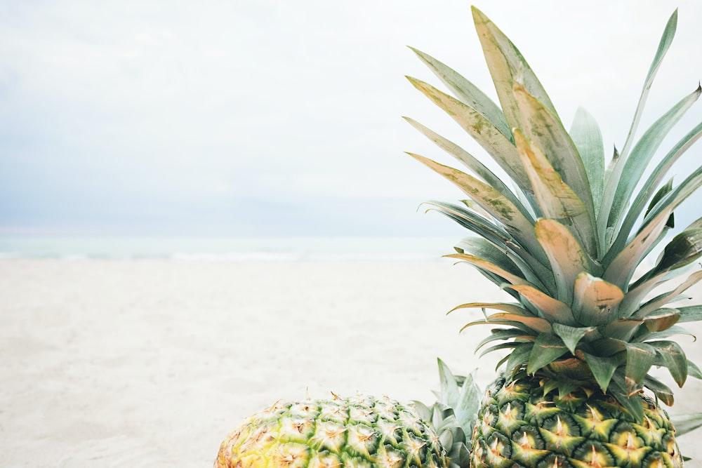 2 pineapples across seashore