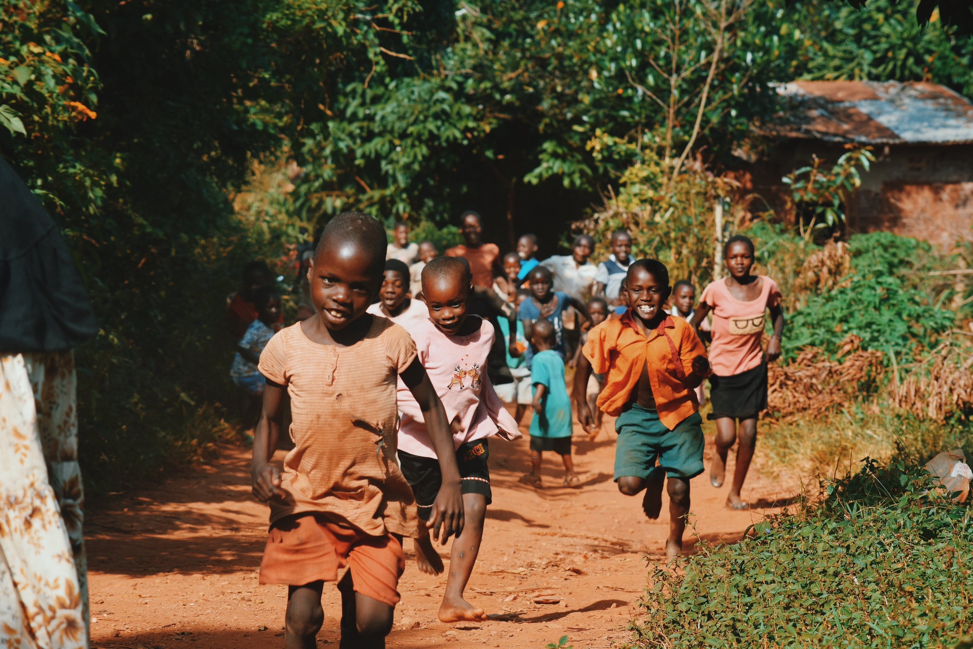 children running and walking on brown sand surrounded with trees during daytime