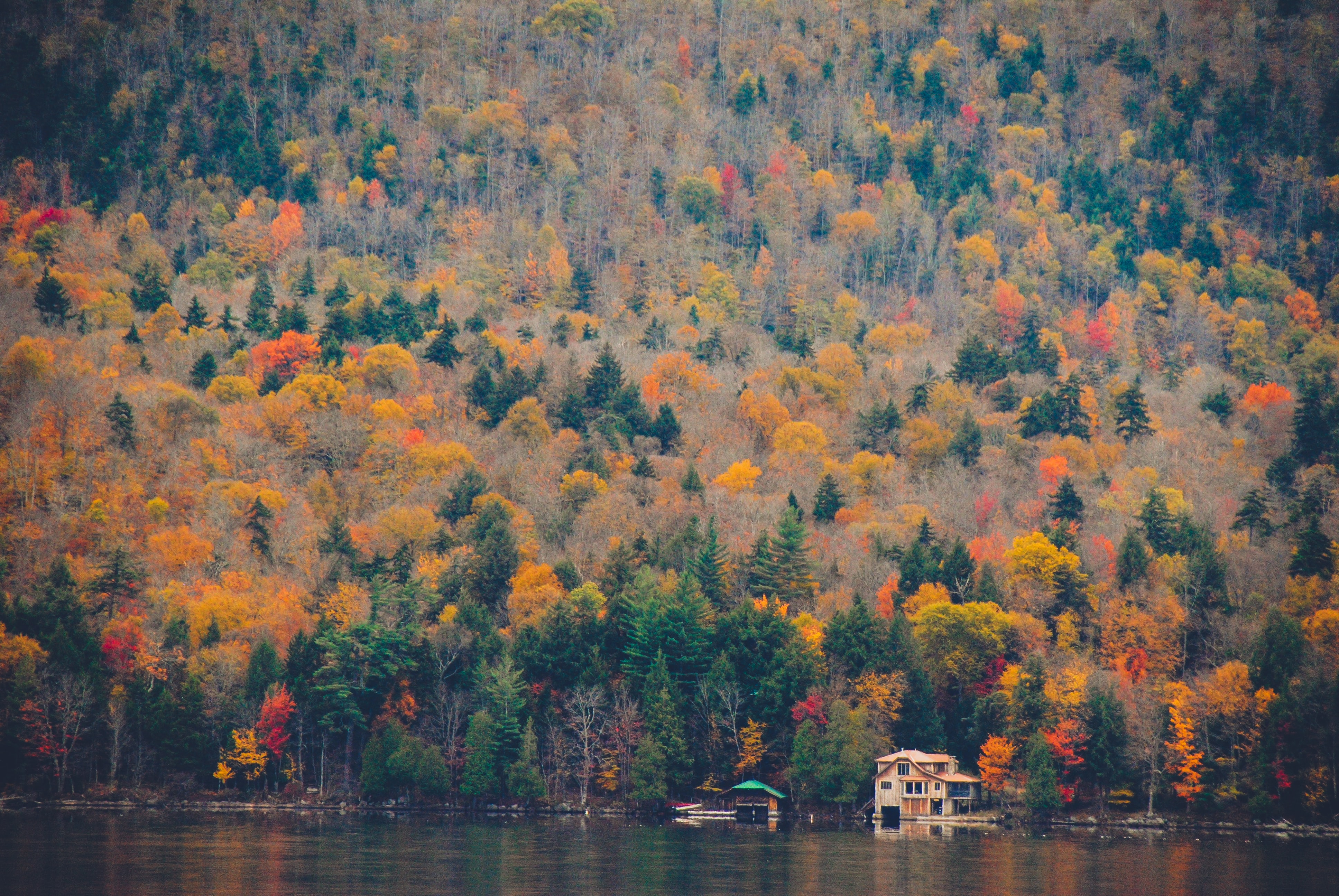 Two wooden buildings in autumn woods on the shore of a lake