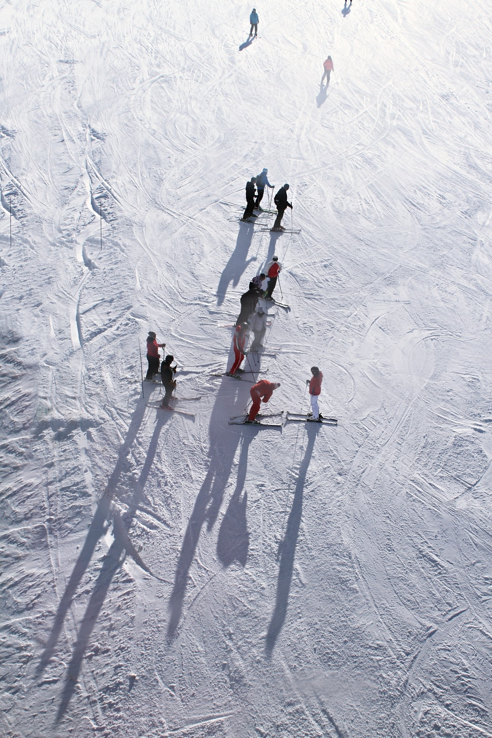 people skiing on snow during daytime