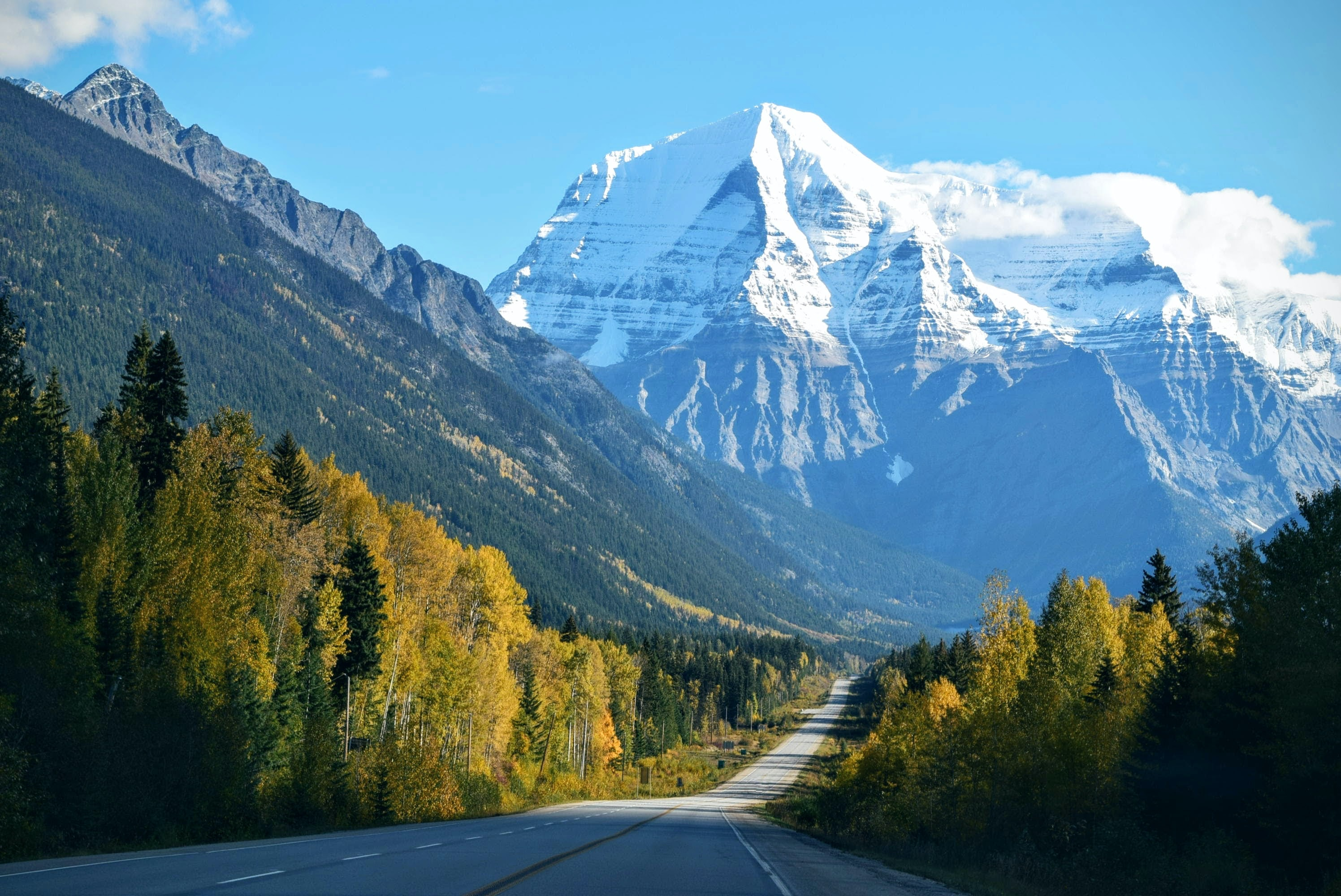 A road leading towards a snow covered mountain peaks surrounded by lush green forest and trees in Mount  Robson.
