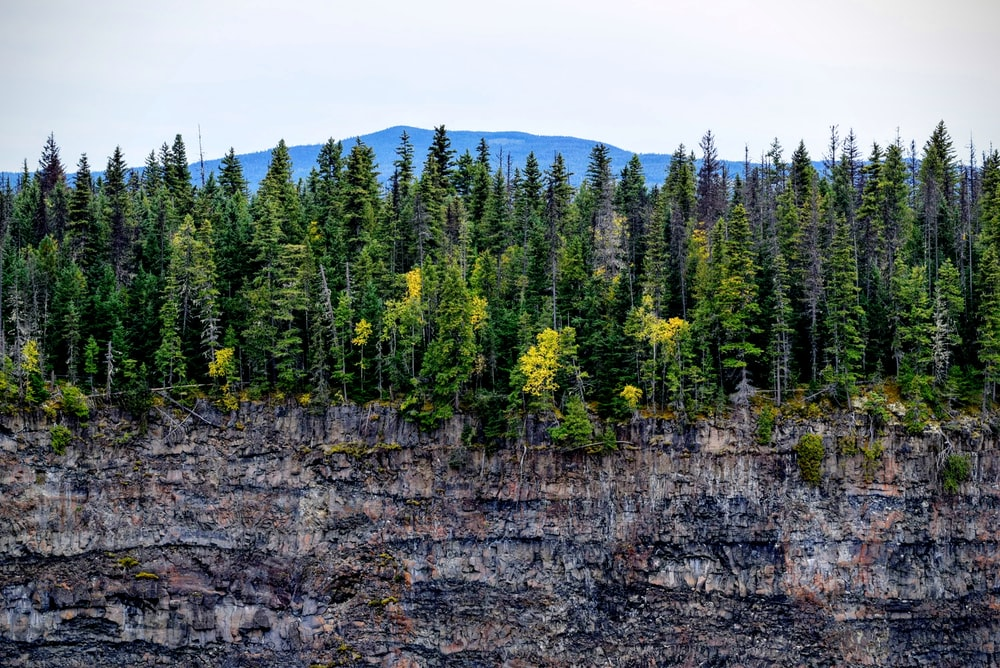rocky mountain with trees under white sky
