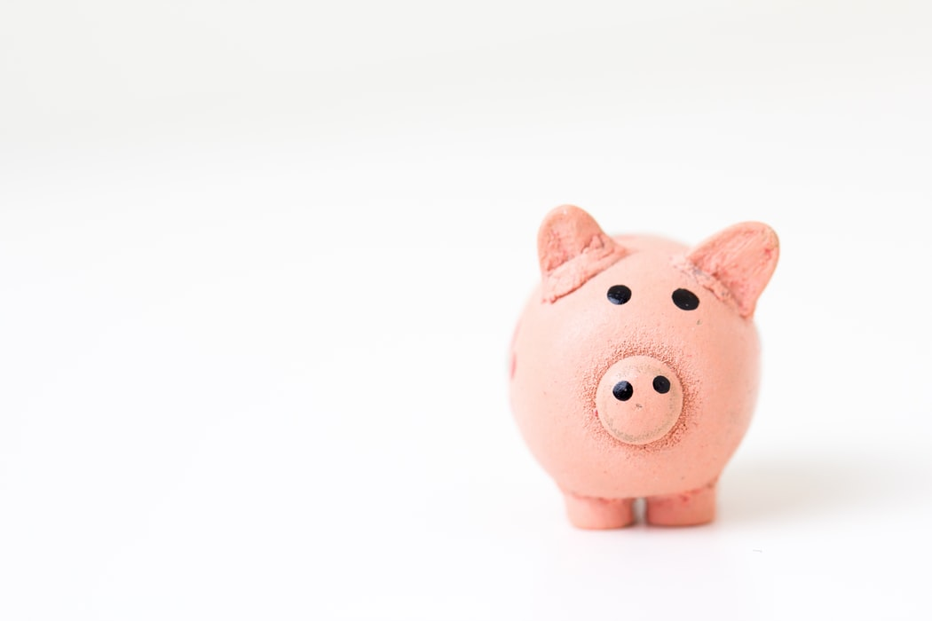 pink pig figurine on white surface