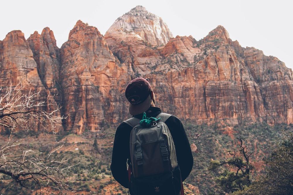 man looking at brown stone mountain