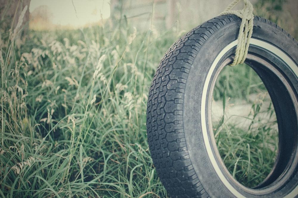 vehicle tire swing
