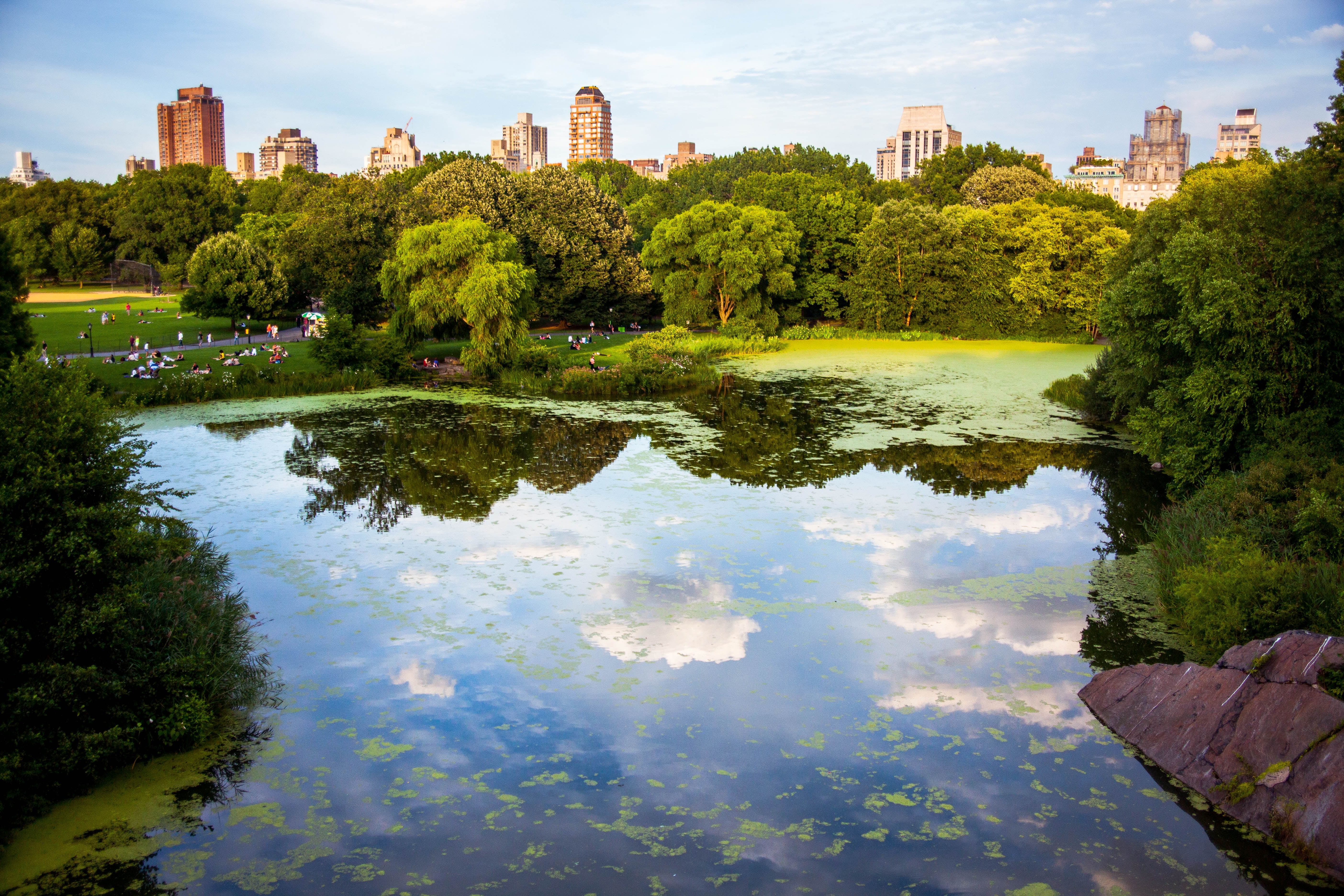 Reflection of Central Park in a pond with New York City skyline in background