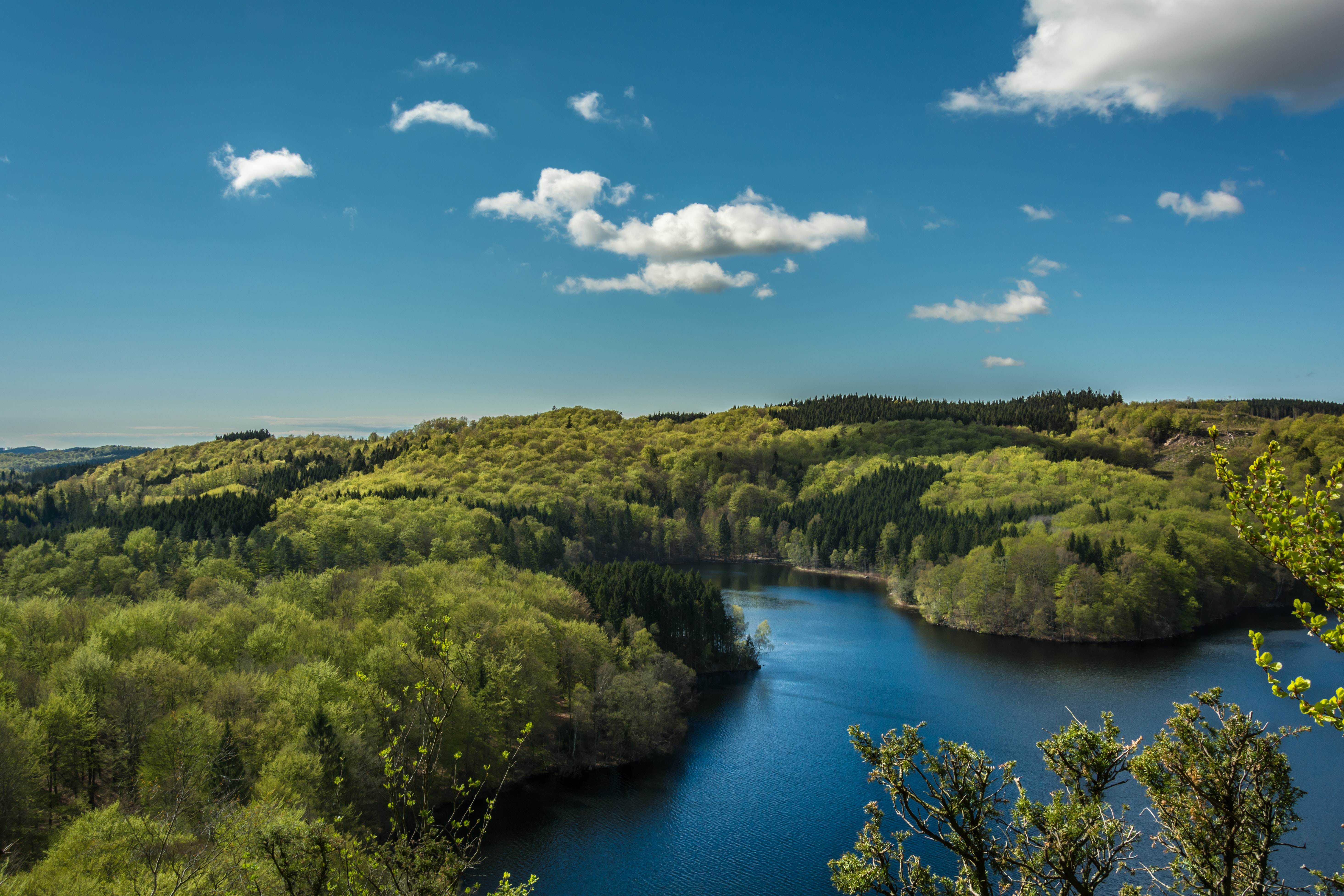 Green forests around a river under a blue sky with several clouds