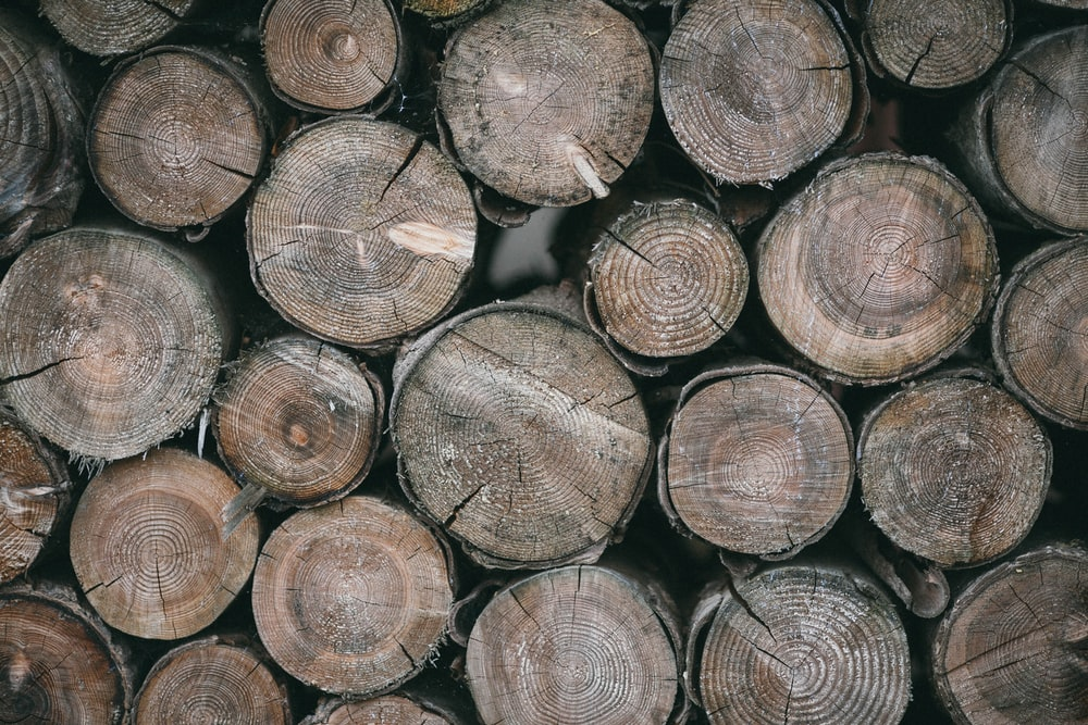 brown wood logs