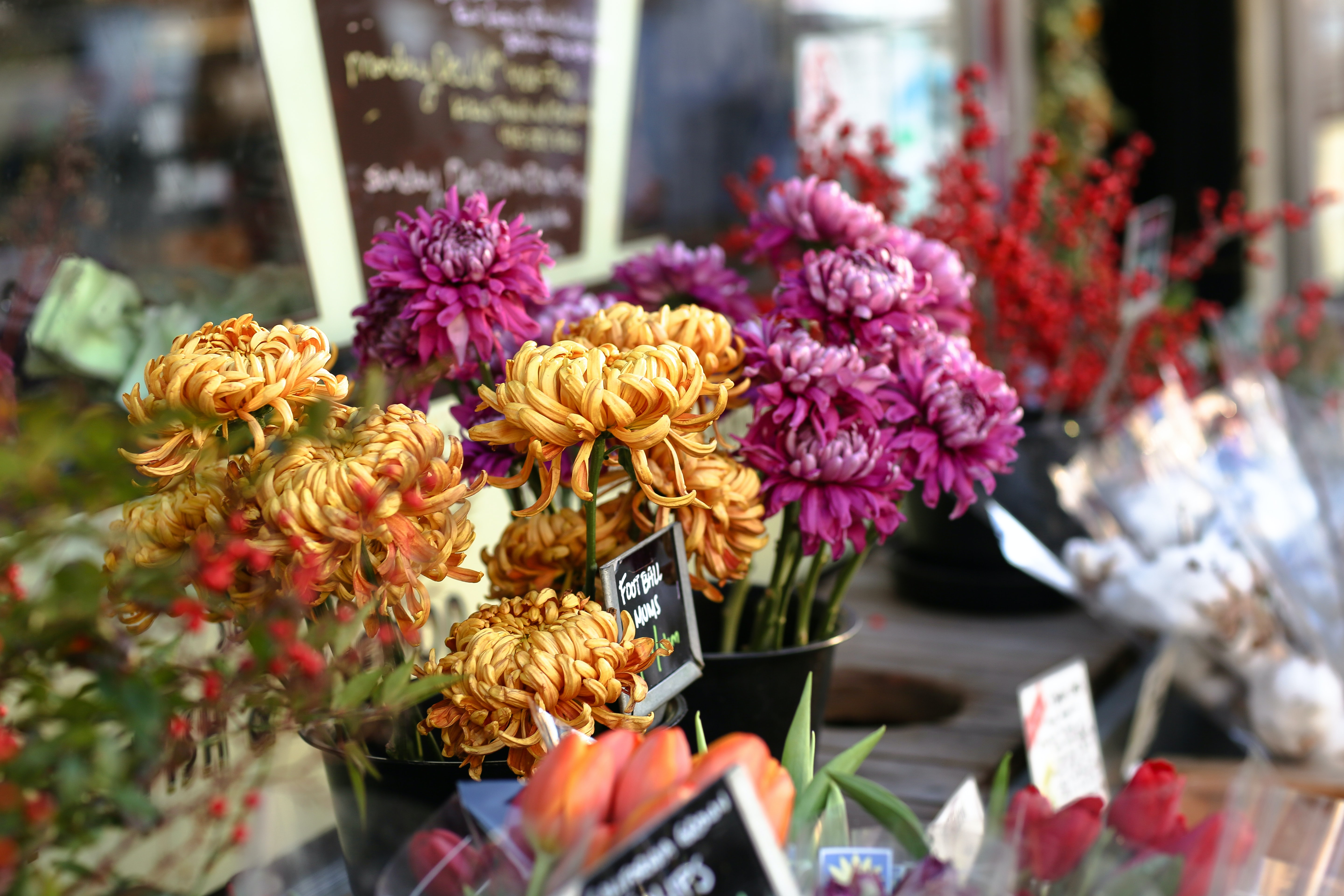 Bouquets of various flowers at a florist's storefront