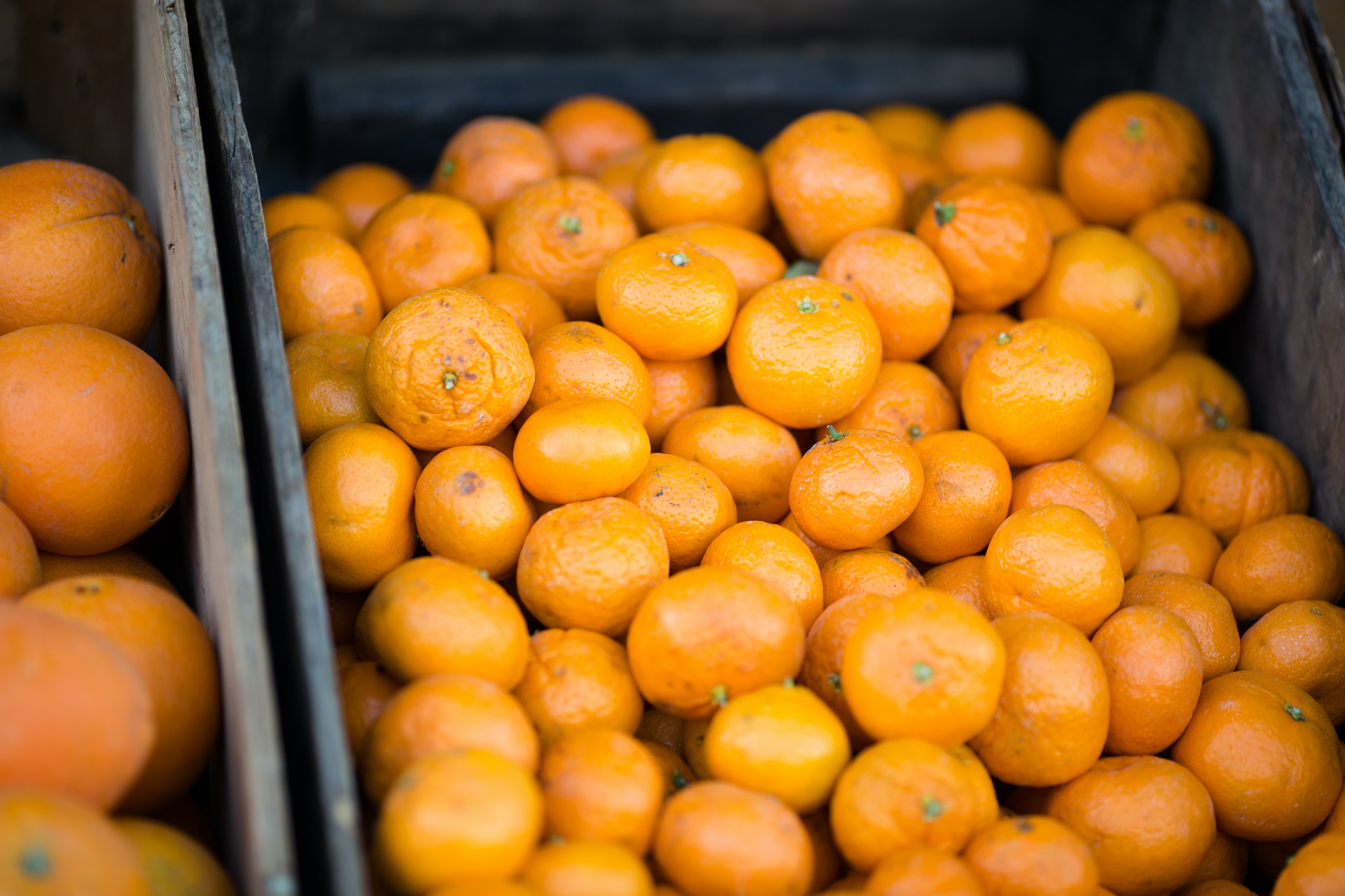 A box full of tangerines