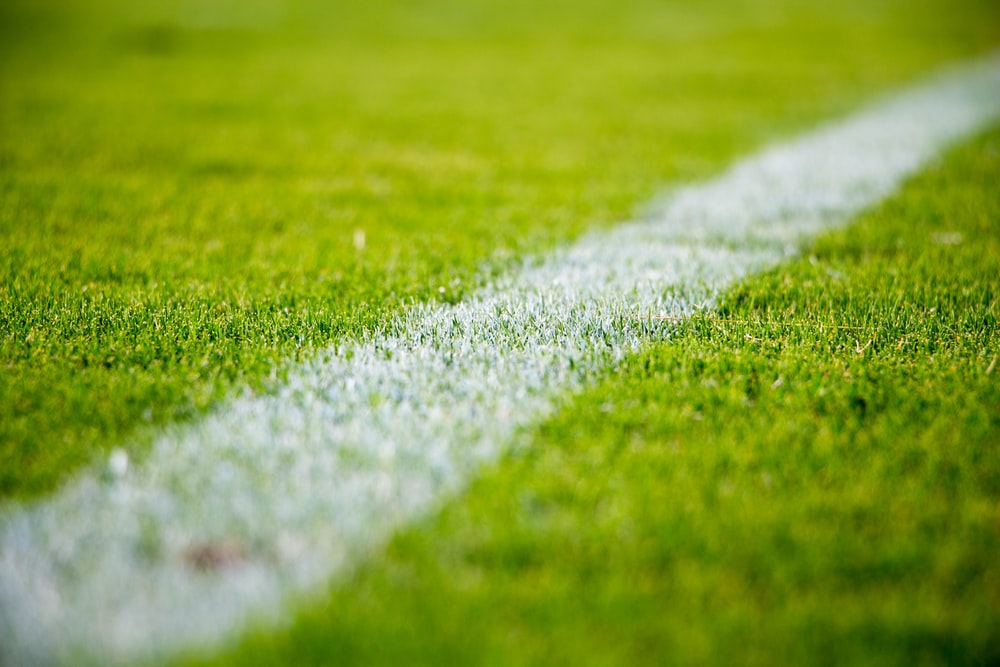 Close-up of a white line on green grass in a soccer field