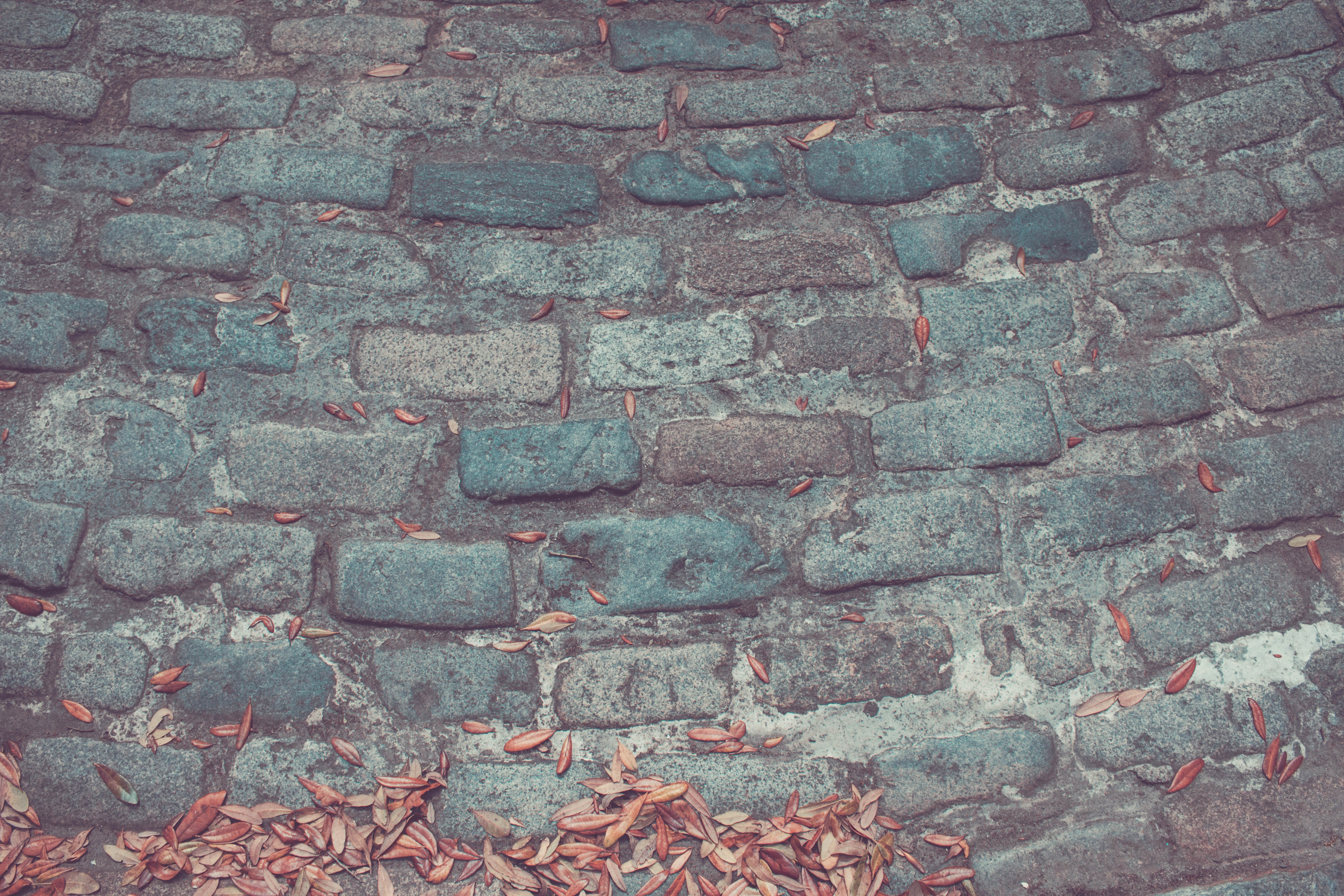gray brick concrete surface with brown leaves