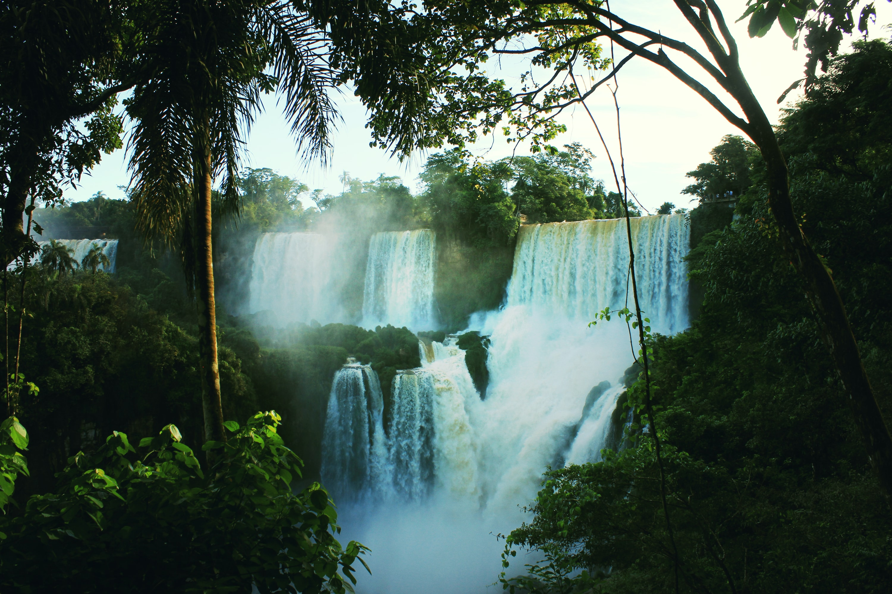 Several waterfalls cascading down in a tropical forest