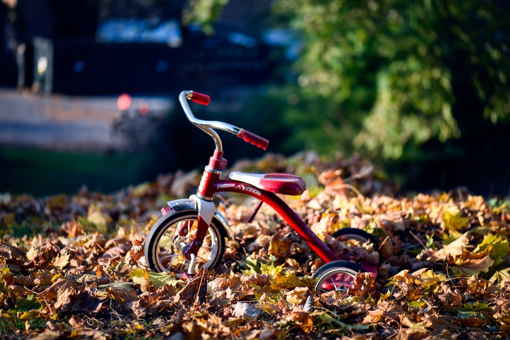 red Radio Flyer trike on brown dried leaves