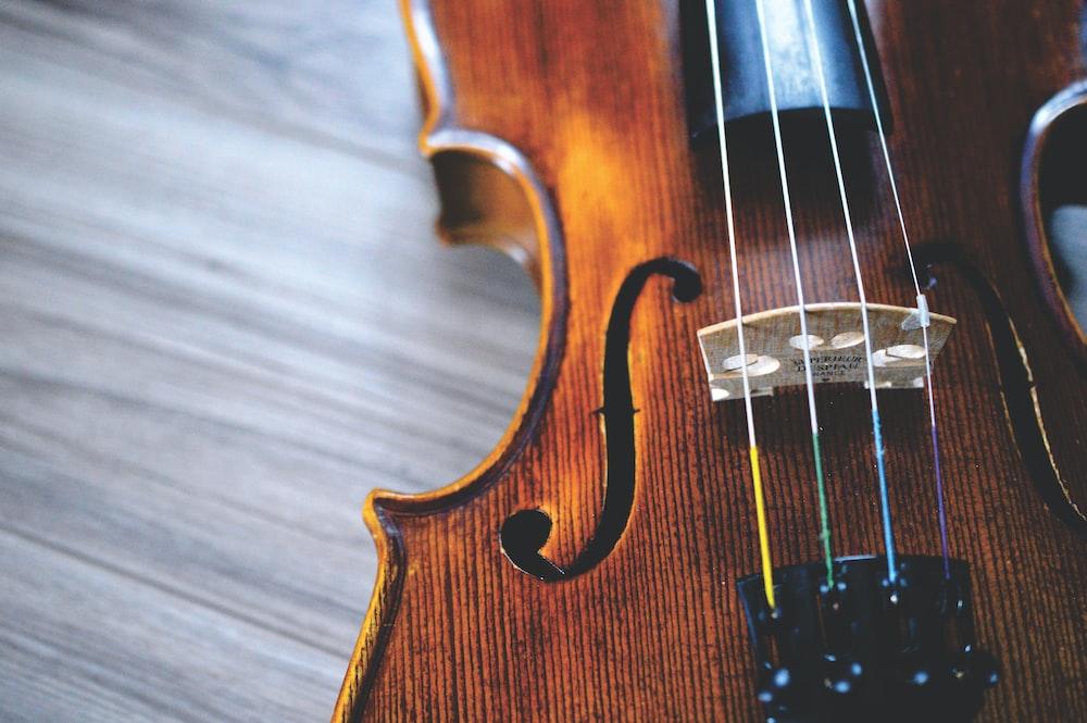 brown and black violin