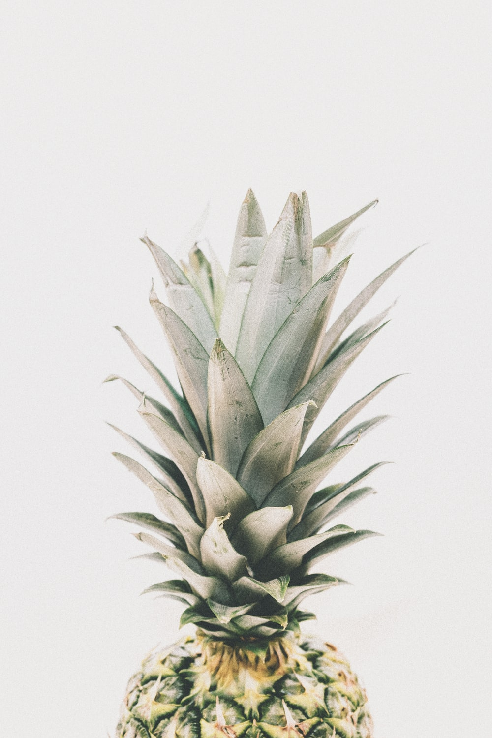 green pineapple close-up photography