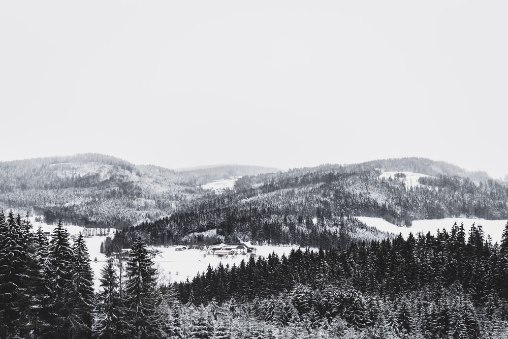 photography of snow covered mountain and forest during daytime