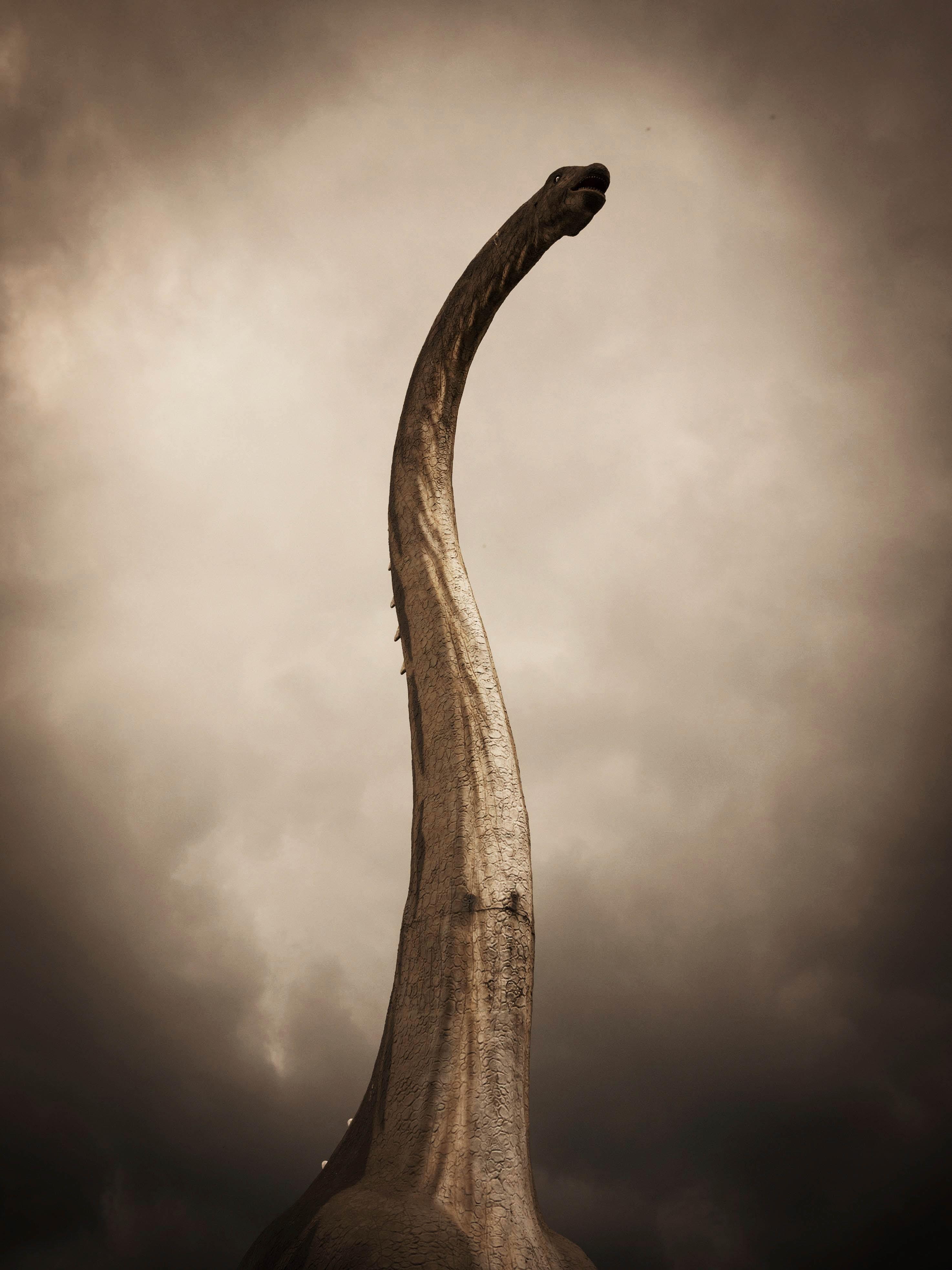 An erected wooden statue.