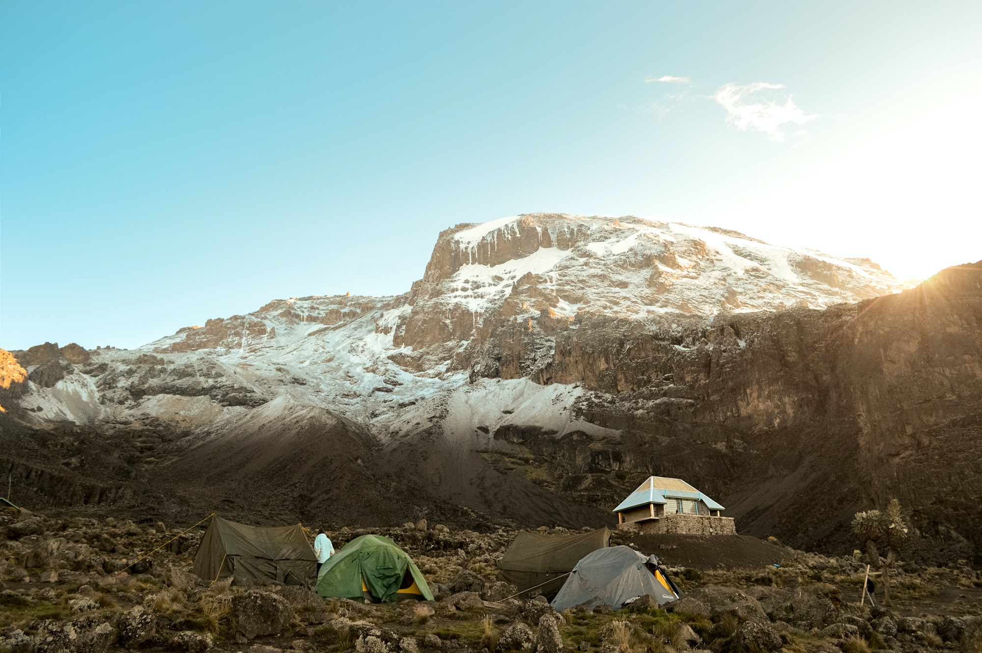 Tents in a field at the bottom of Mount Kilimanjaro with snow on the peaks