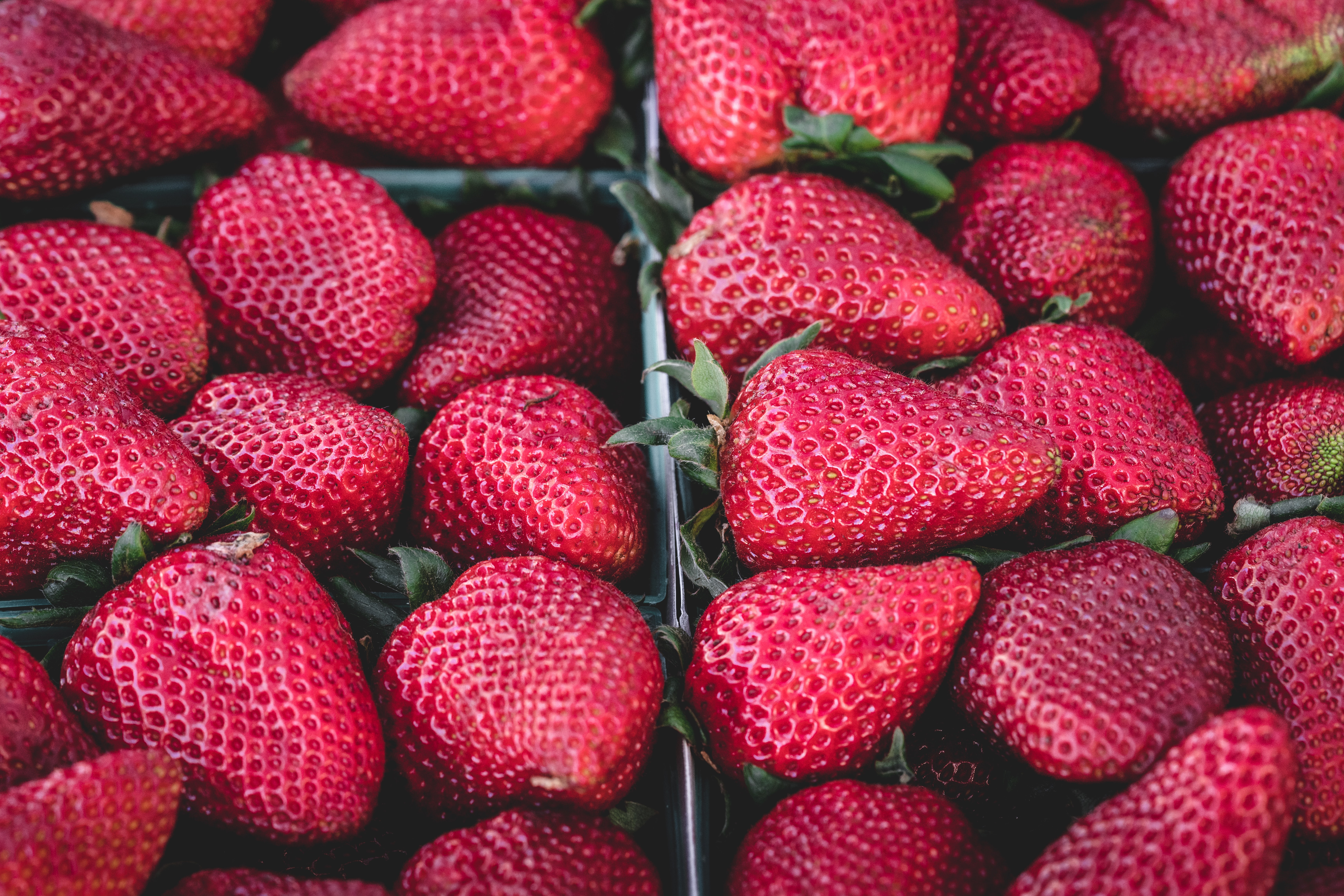 red strawberry fruits