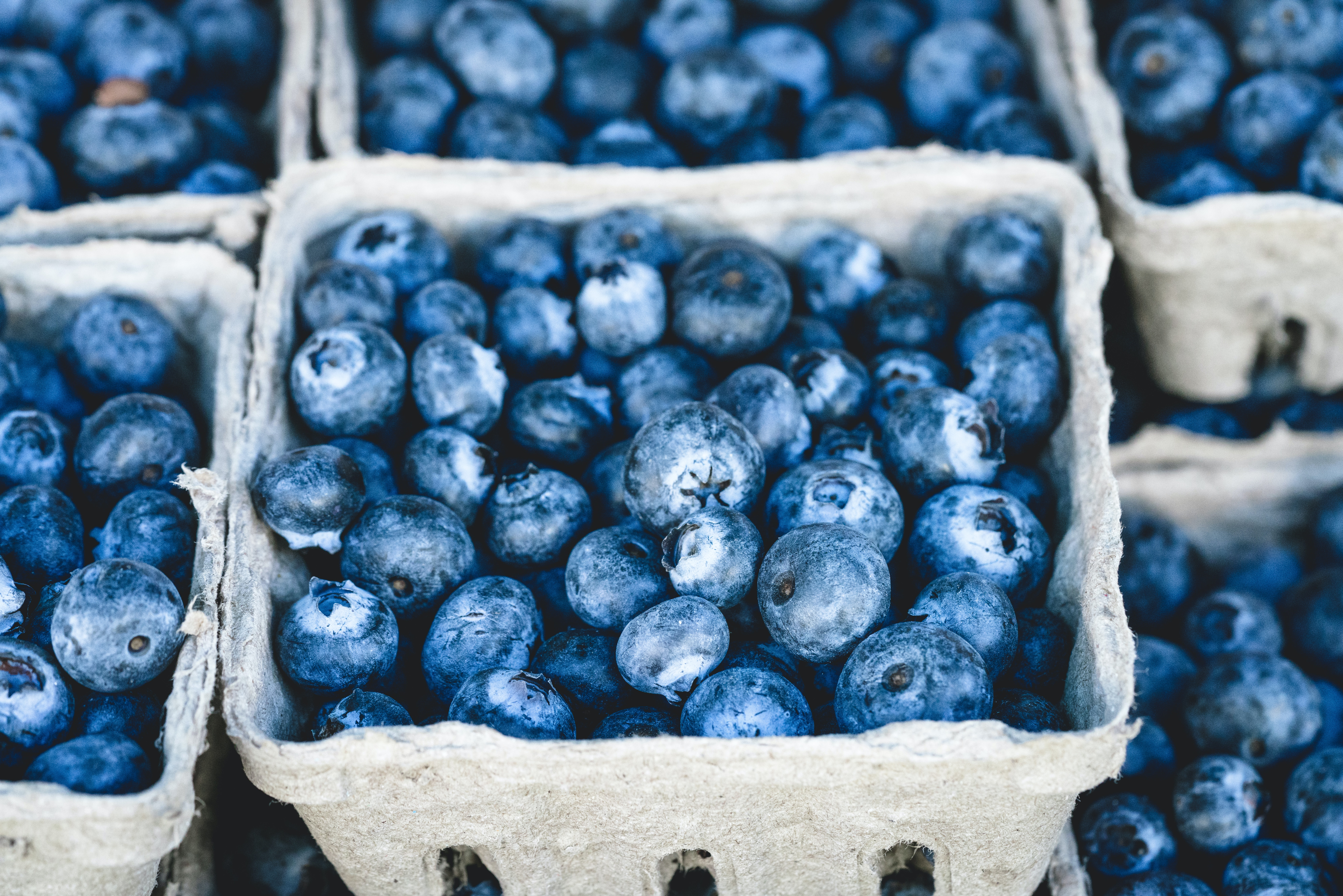 Baskets of fresh blueberries for sale at a farmer's market