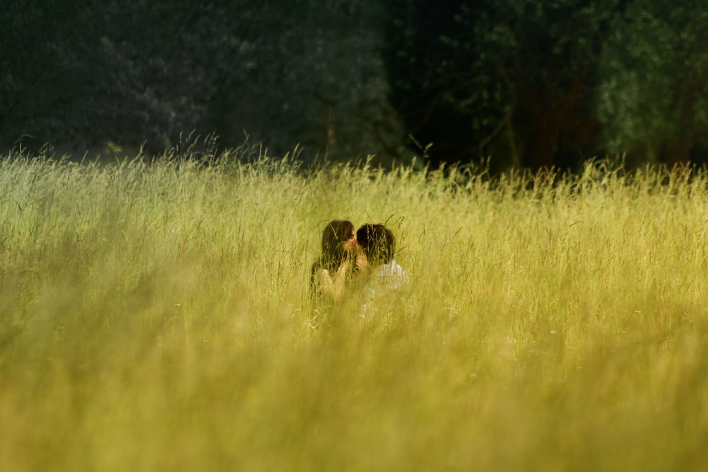 man and woman kissing in the middle of a grass field