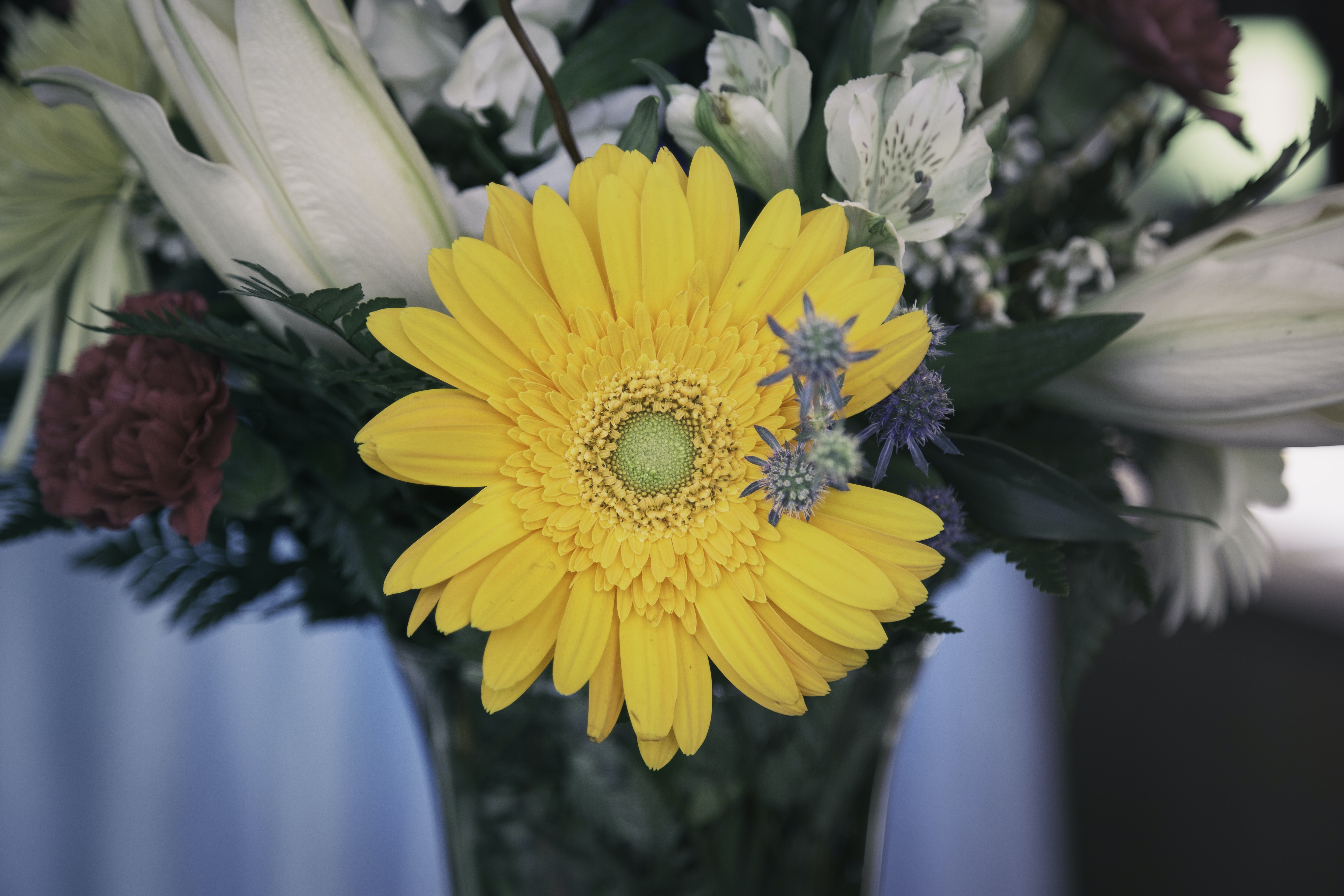 yellow clustered flower in vase