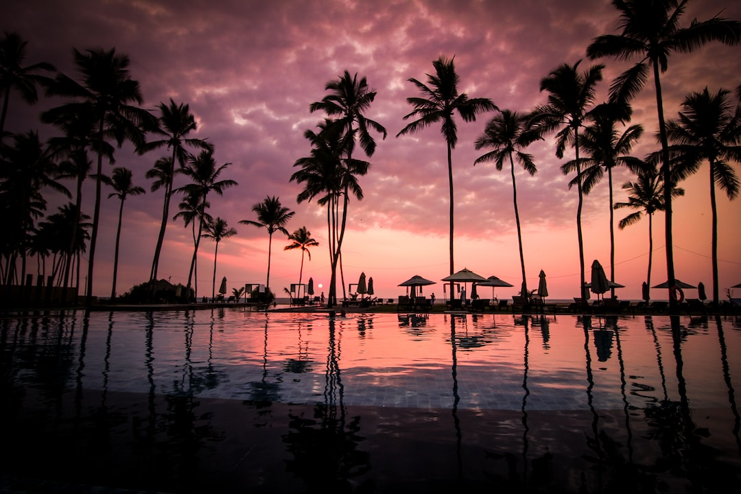 Tropical resort swimming pool with palm trees after sunset at Negombo Beach