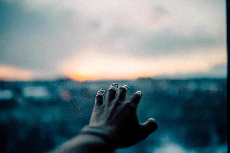 human left hand