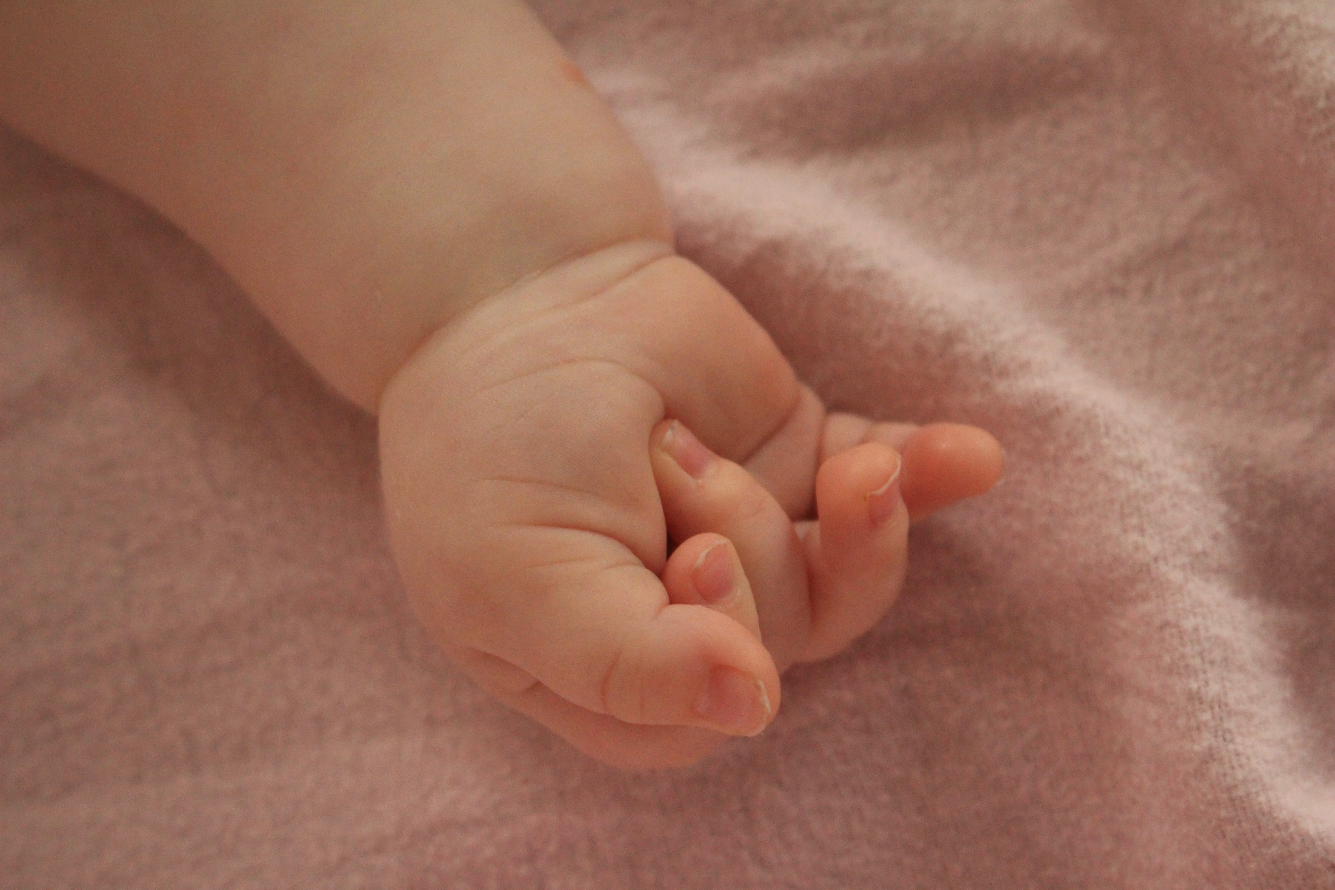 Close-up of baby's clenched hand on pink blanket