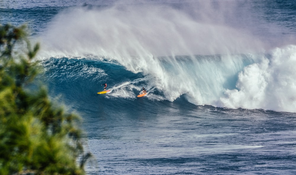 person surfing on wave