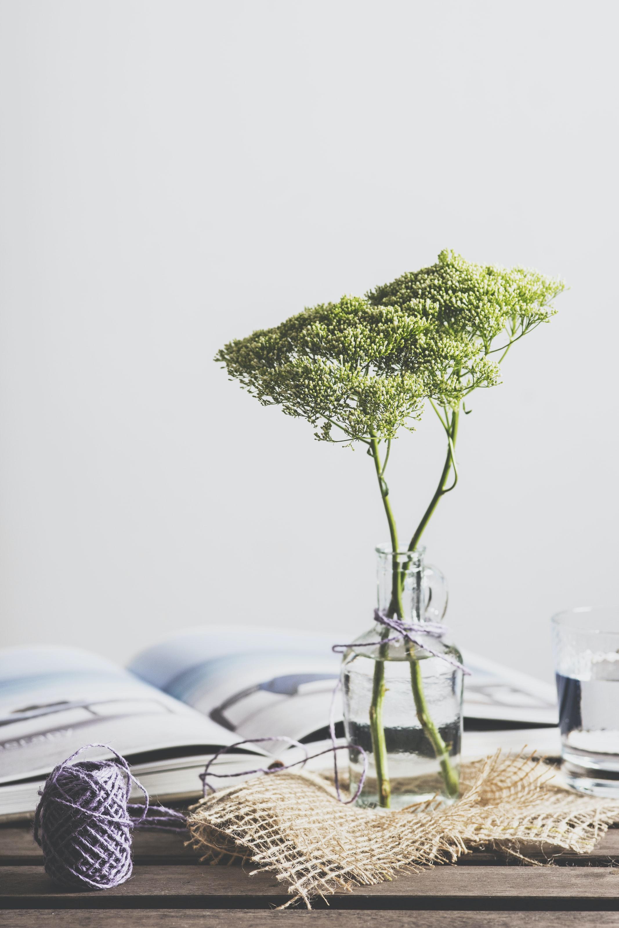 bud vase with green flowers and wabi sabi aesthetic