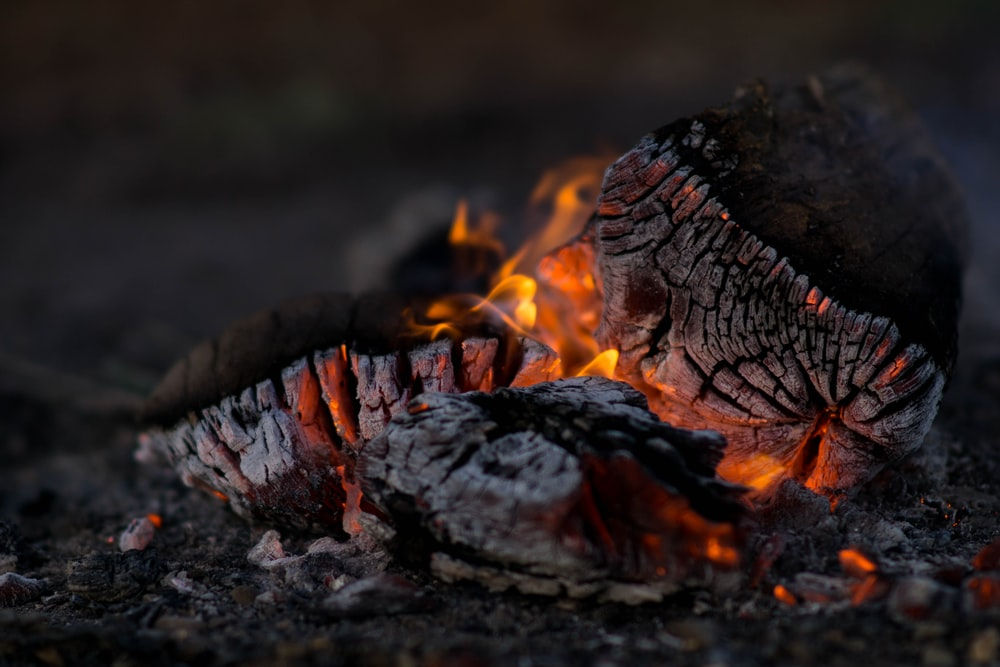 close photography of burning wood