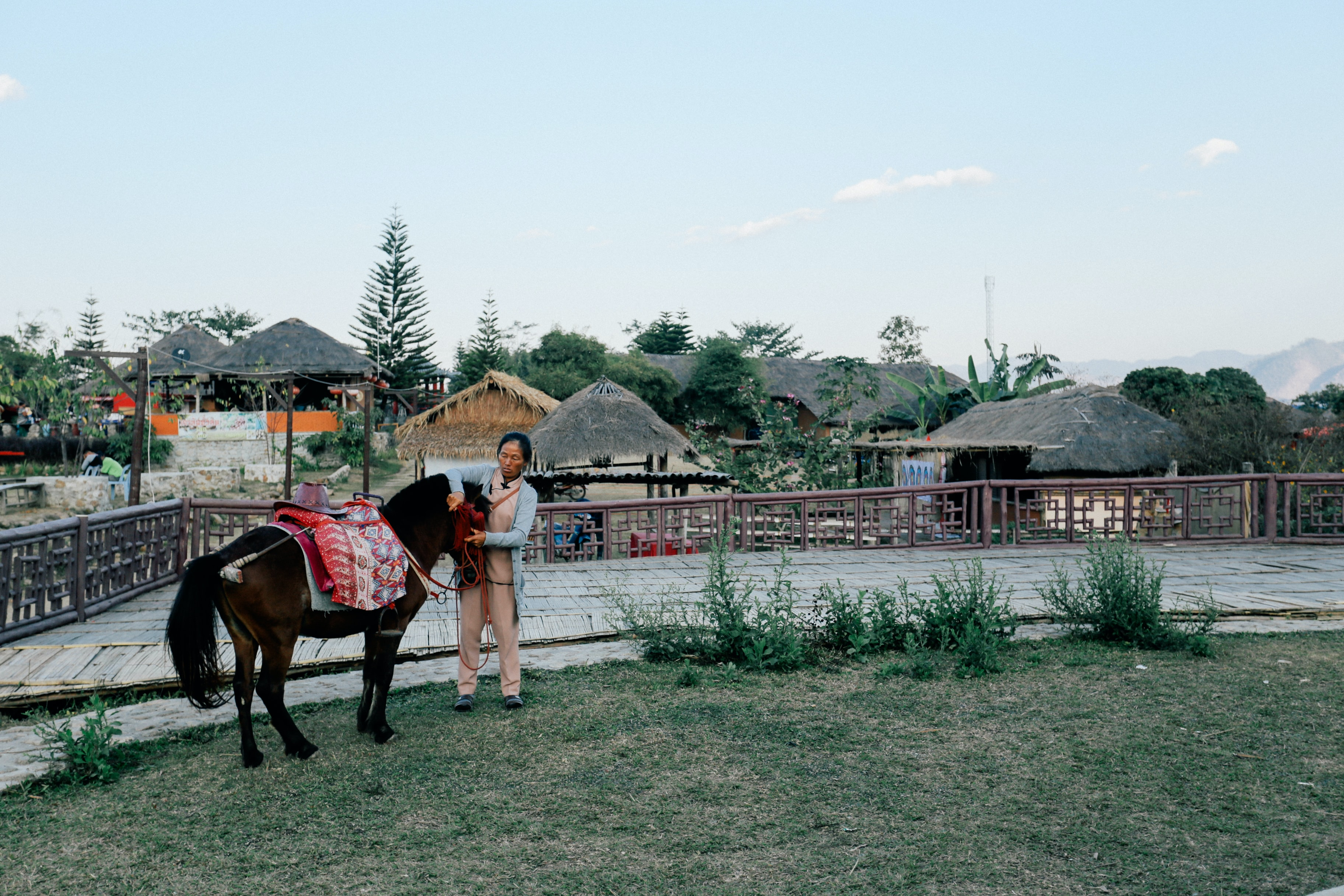 woman holding black horse beside fence