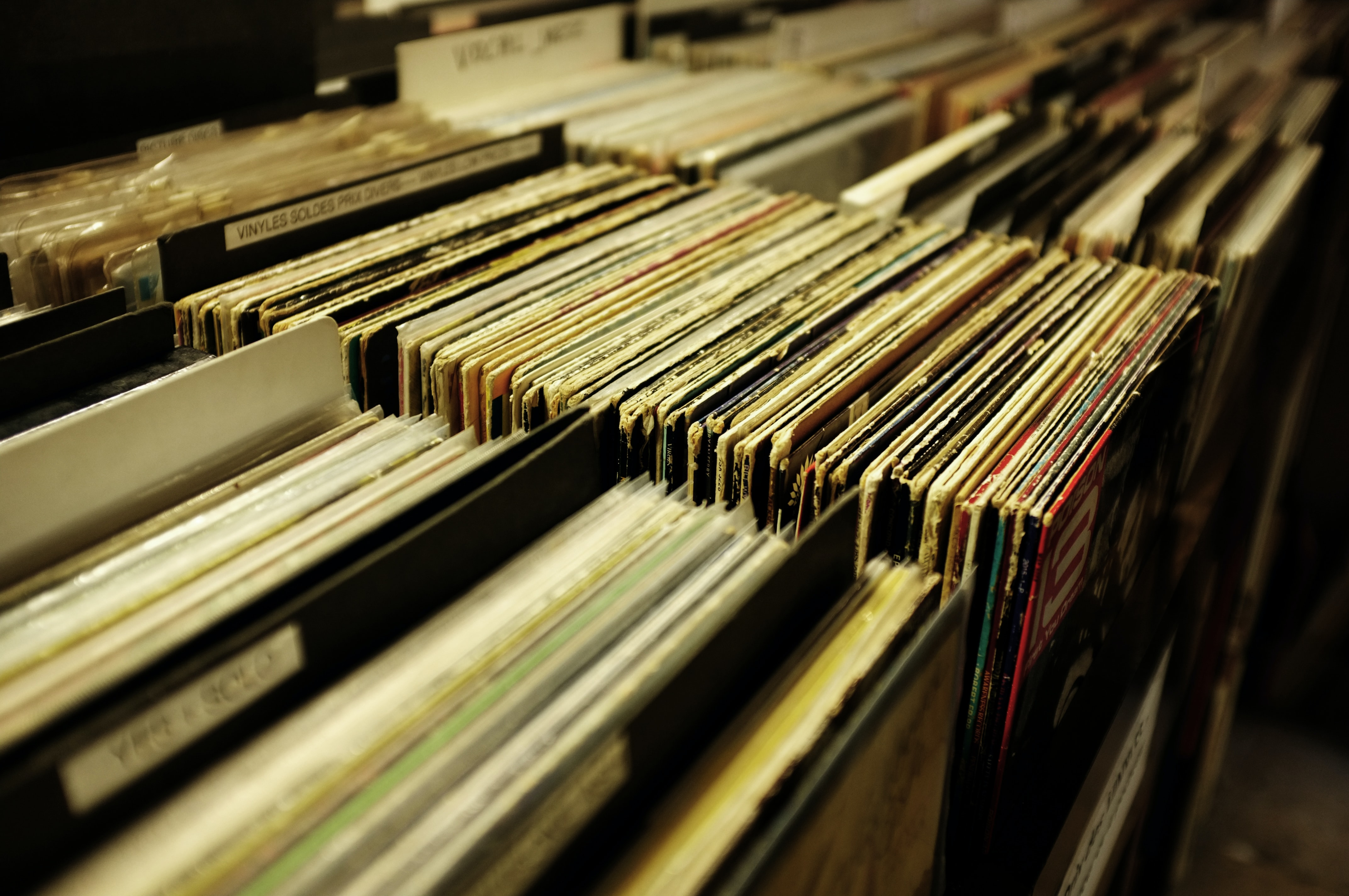 Vinyl records lined up on the shelf of a music store