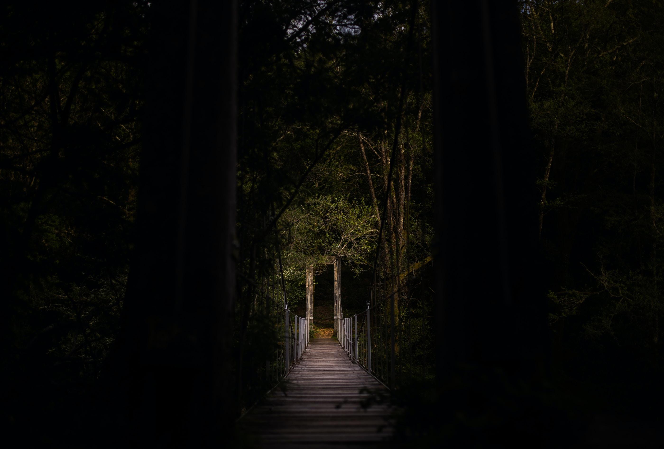 A wooden suspension bridge in a dark forest