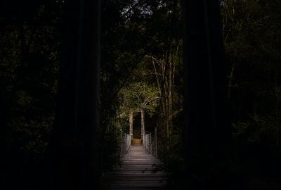 selective focus photography of bridge arcade zoom background