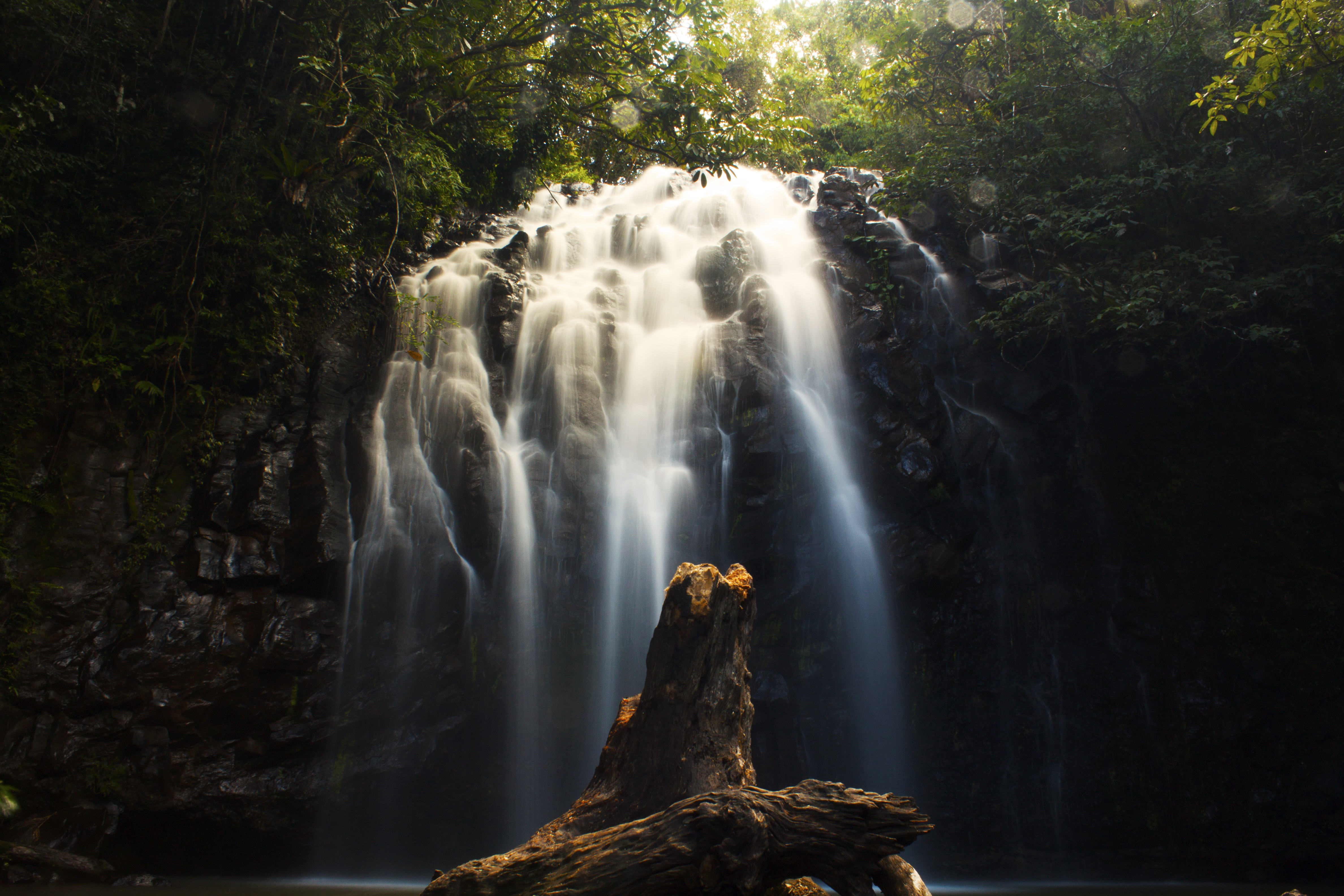 Water  Waterfall  Flowing And Log Hd Photo By Nicholas