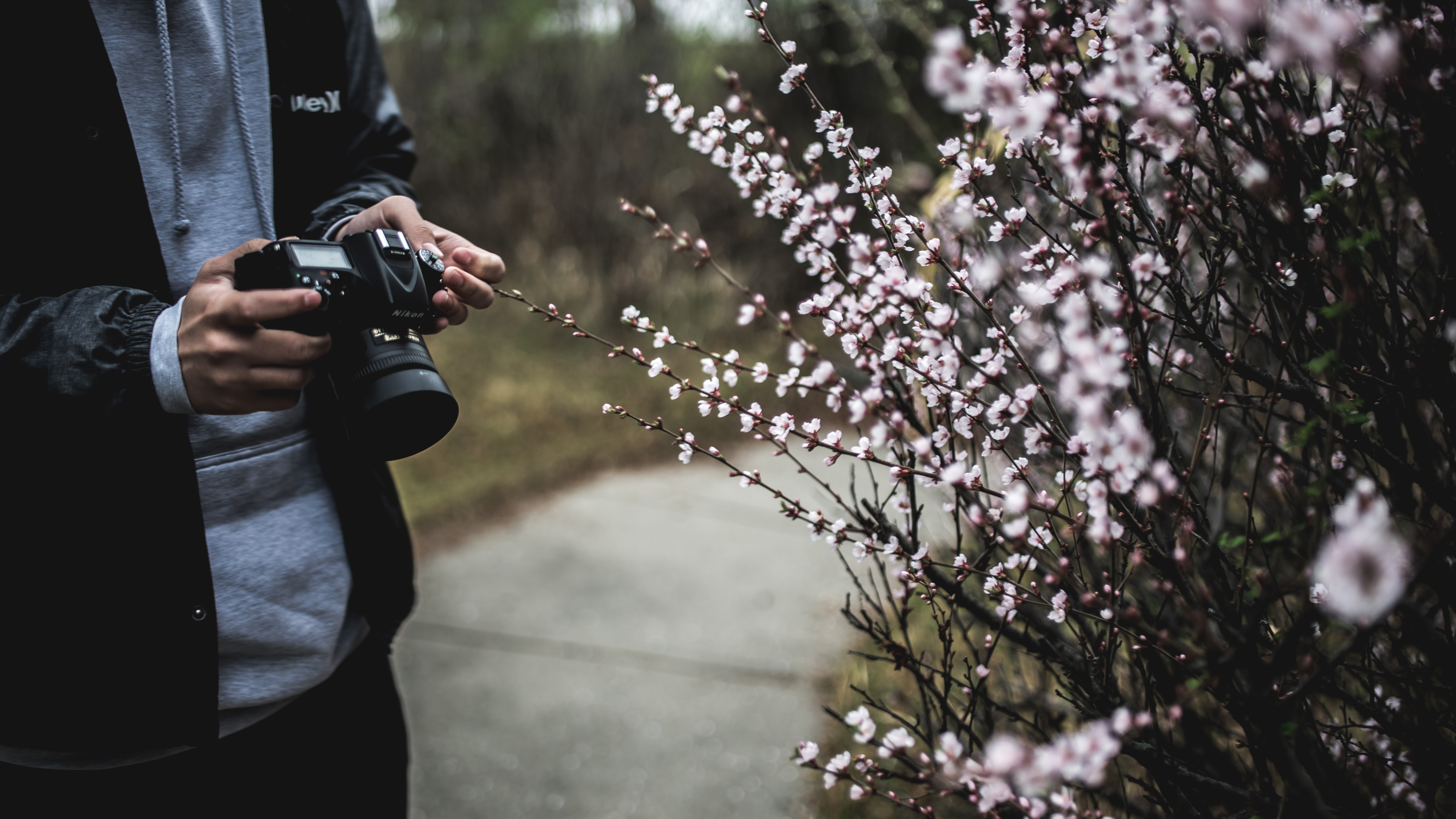 A man with a DSLR camera next to a bush covered with small white flowers