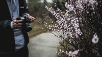 person holding black camera beside white flowers