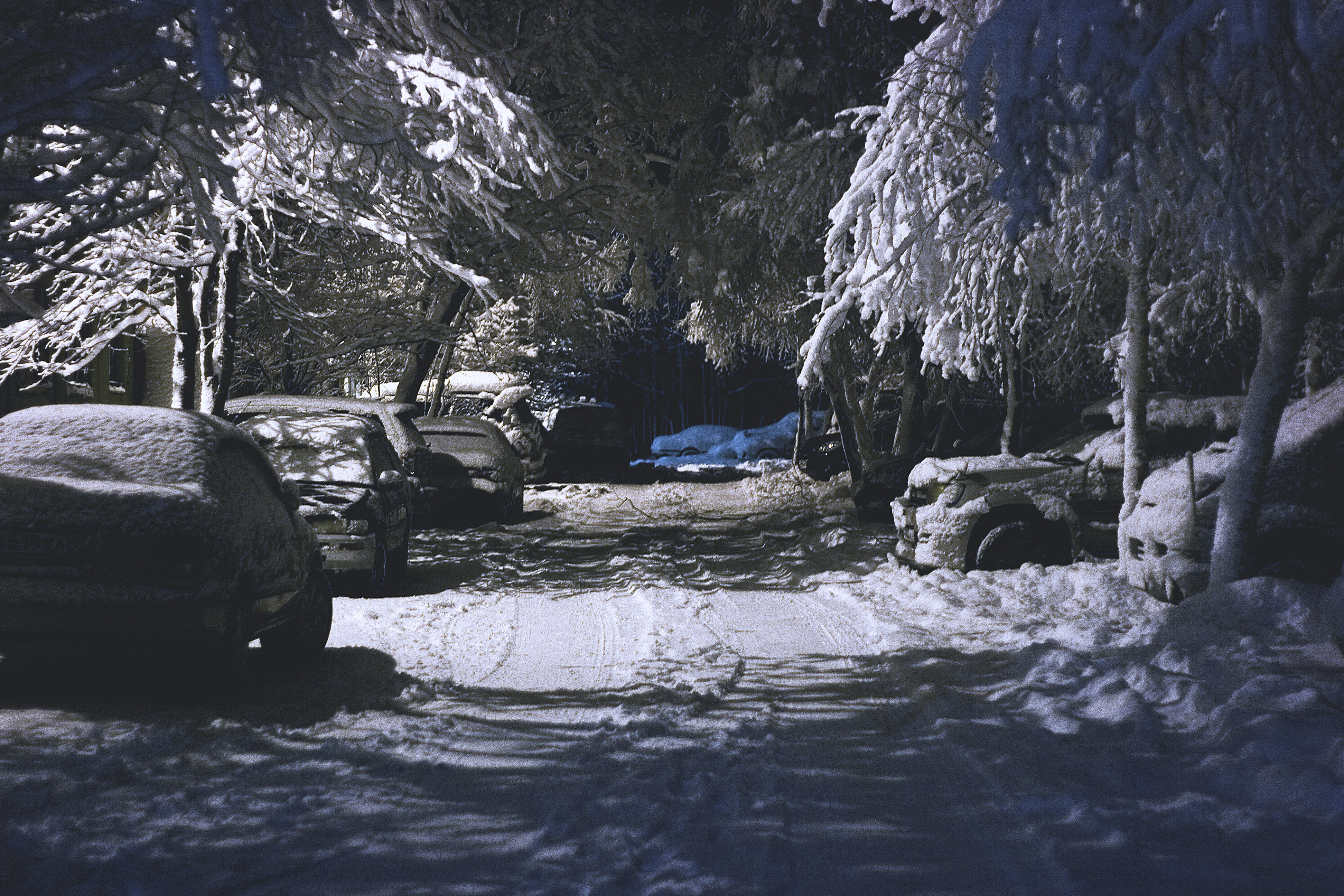 Cars parked along a road at night with snow covering the road, cars and trees