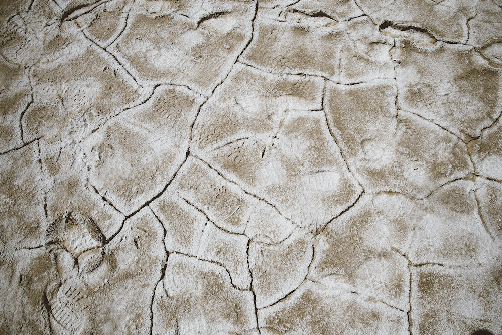 closeup photo of brown cracked soil