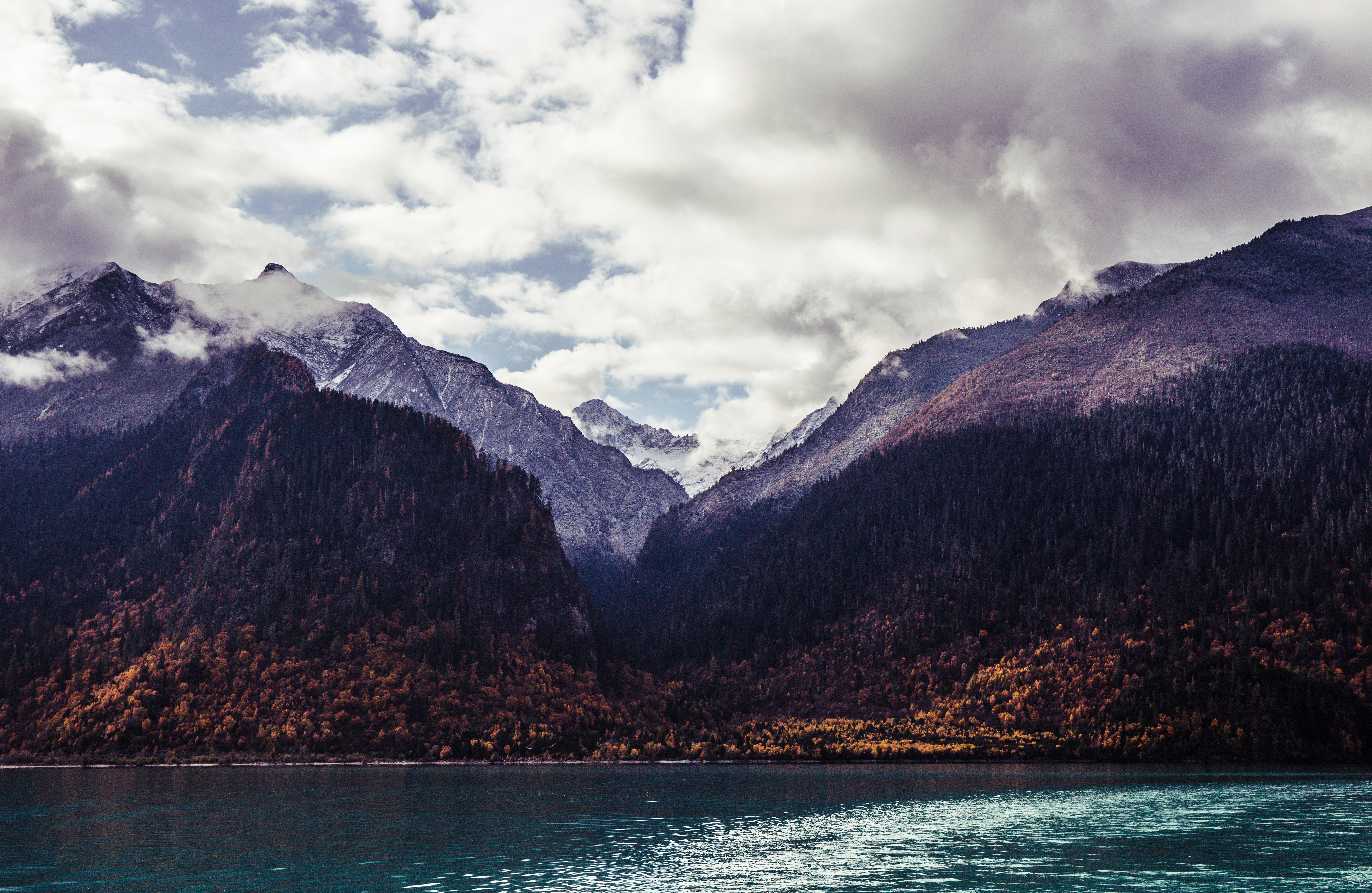 View from an azure lake on tall wooded mountains at the shore