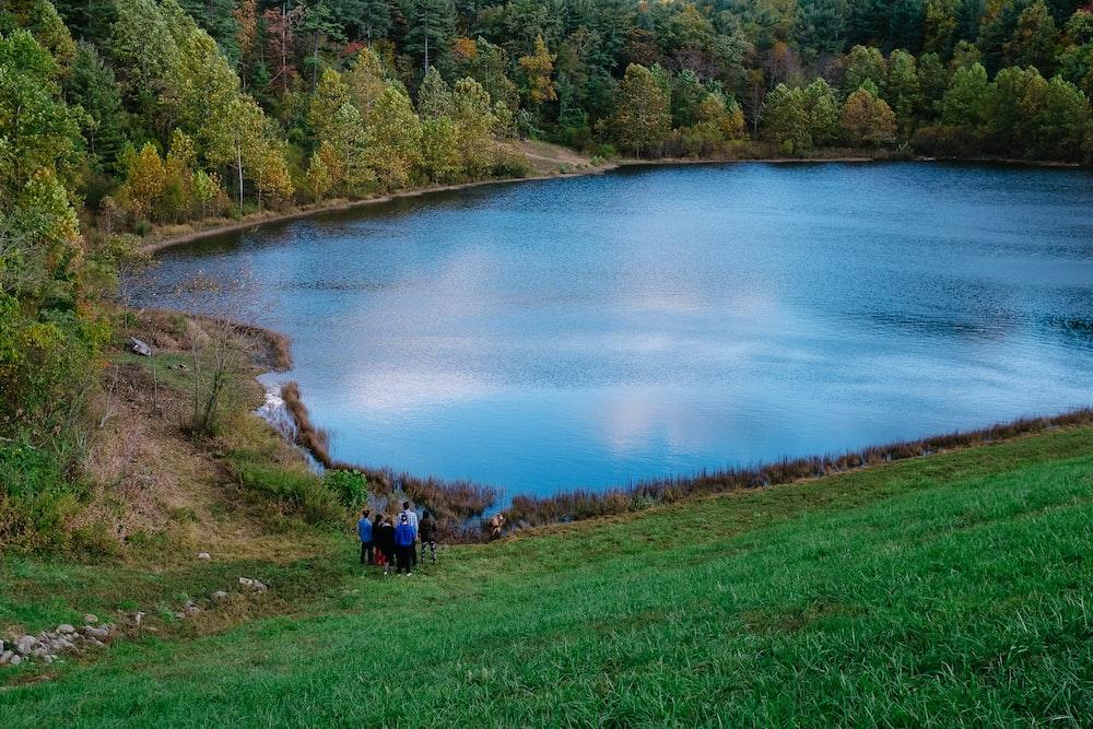 people walking on green grass field near lake during daytime